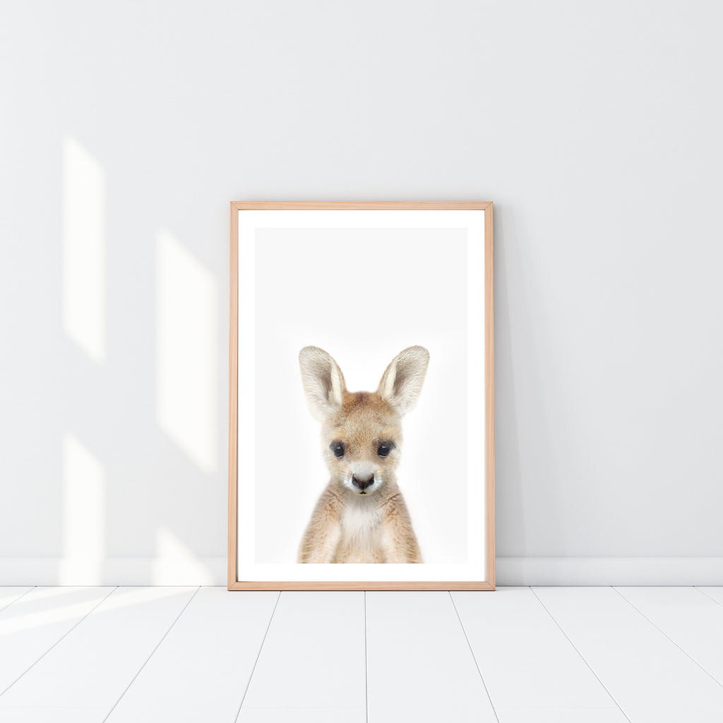 Baby Kangaroo - Jenna Davie Illustration