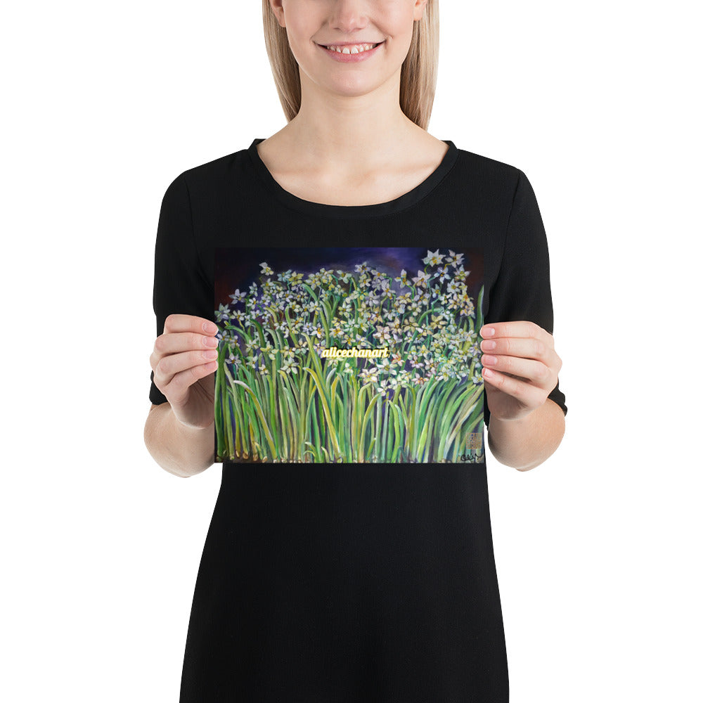 Narcissus Water Lilies, 2015, Art Print Poster, Made in USA - alicechanart
