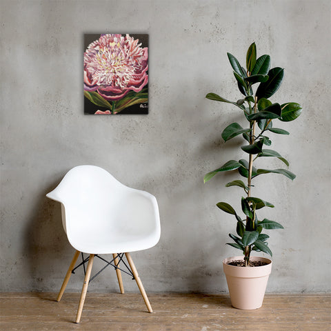 Chinese Peony Hybrid, 2018, Floral Art Print, Premium Wall Art Canvas, Made in USA/EU - alicechanart