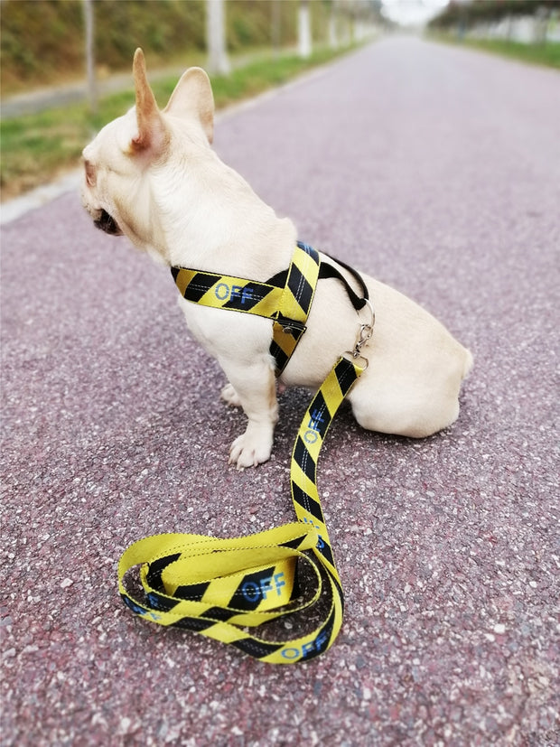Woof White V2 Leash and Harness