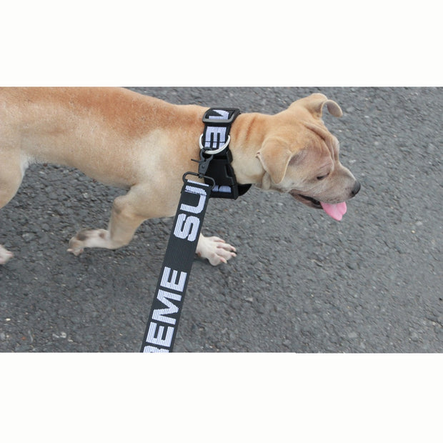 Supreme Dog Collar & Leash