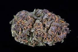 Grape Haze