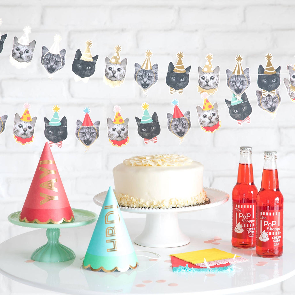Party Animals - Cat Banner