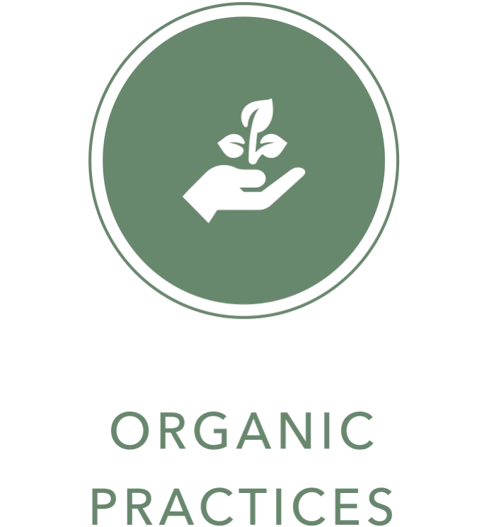 hand and plant icon Organic Practices text