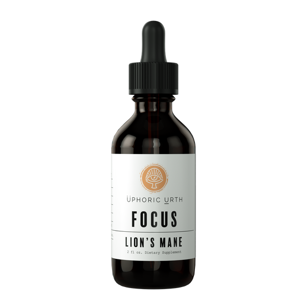FOCUS - Lions Mane Mushroom - Double Extracted Tincture
