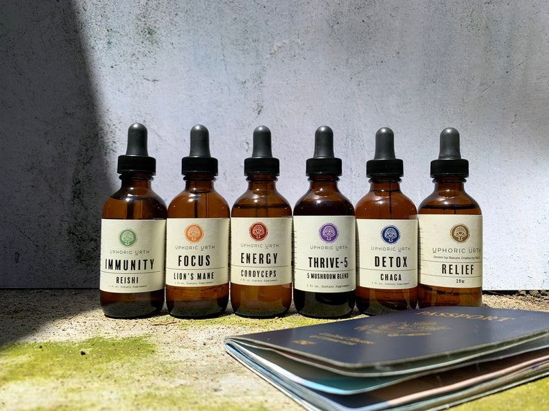 The Complete Set - Double Extracted Mushroom Tinctures