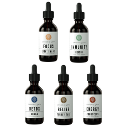 The Holistic Wellness Tincture Set - Double Extracted Mushroom Tinctures