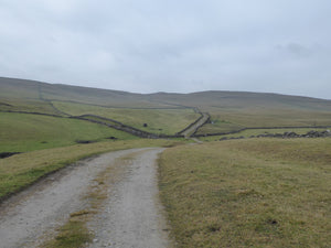 Kilnsey Moor and Mastiles Lane.