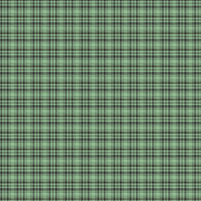 S355 GREEN CHECK PLAID PRINT