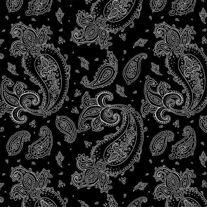 J134 Paisley black and white Print