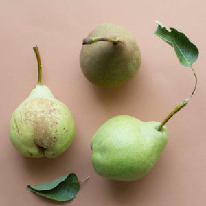 Embrace the Crunch: 5 Asian Pear Ciders and Perrys