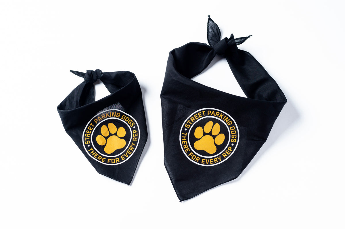 Street Parking Dog Bandana - Street Parking