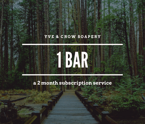 1 Bar Subscription