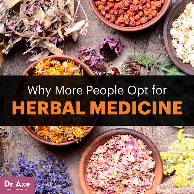 Herbal Medicine Benefits & the Top Medicinal Herbs More People Are Using