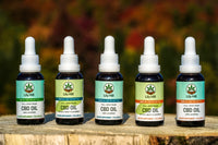 Our CBD Oil is Now Certified Organic!