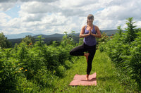 Join us for CBD Yoga at Lily Hill Farm!