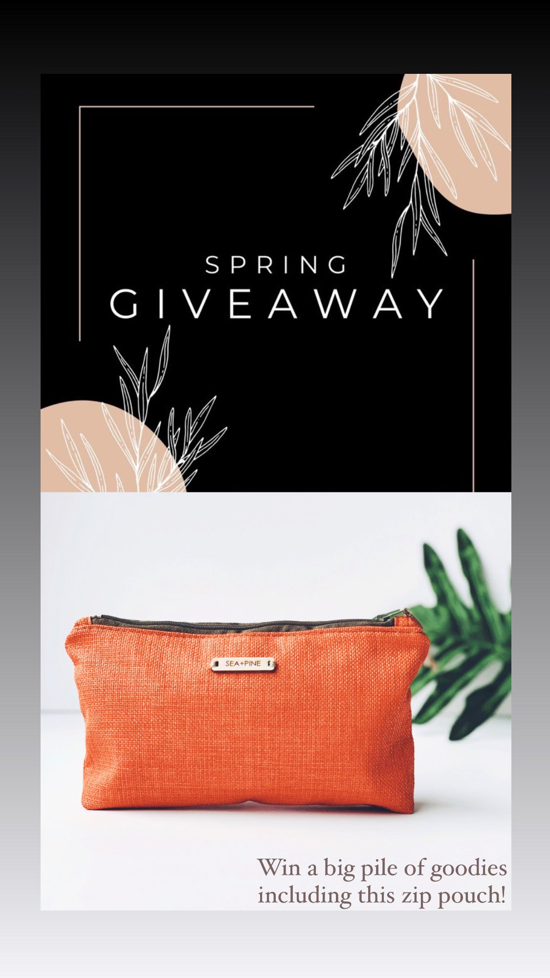 Spring Giveaway coral mini zip pouch