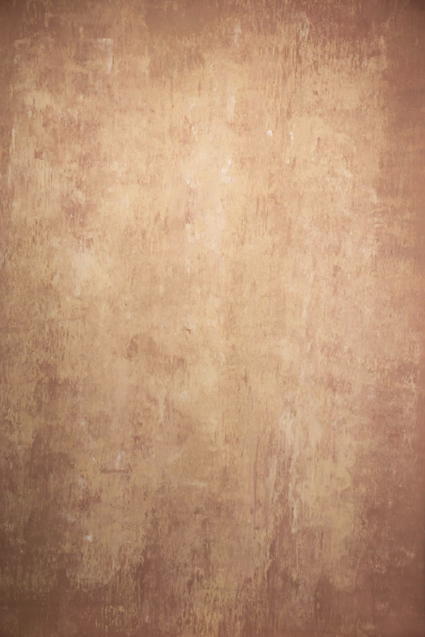 Clotstudio Abstract Light Brown Textured Hand Painted Canvas Backdrop #clot 57