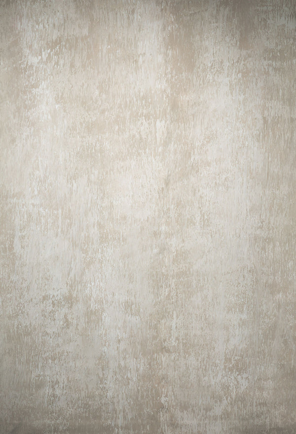 RTS-Clotstudio 5X7 ft & 7X9 ft Abstract Grey Beige Textured Hand Painted Canvas Backdrop #clot 55