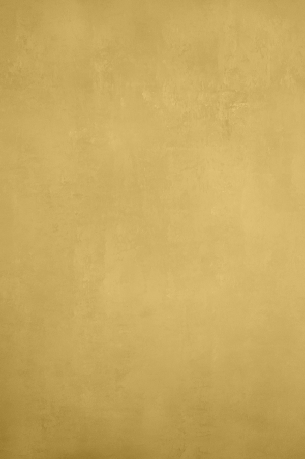 Clotstudio Abstract Bright Gold Textured Hand Painted Canvas Backdrop #clot 94