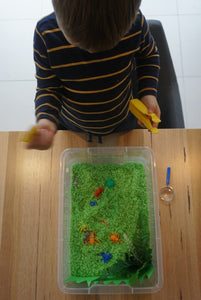 Bug Hunt - Sensory Bin Kit