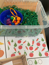 Load image into Gallery viewer, Fruit and Vegetable Farmers - Sensory Bin