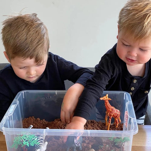 Wild Animal Safari - Sensory Bin Kit