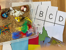 Load image into Gallery viewer, Birds and Feathers  - Sensory Bin Kit