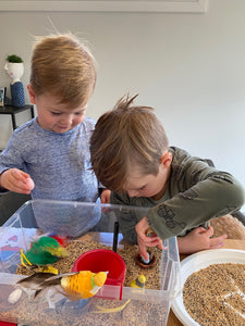 Birds and Feathers  - Sensory Bin Kit