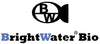 brightwater bio media filtration media for aquariums and fish tanks
