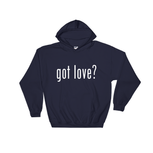 Got Love Hoodie - Hidden In God
