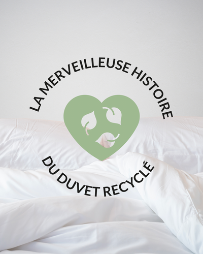 The eco-duvet for a cozy winter!