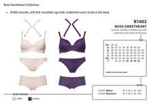 Load image into Gallery viewer, Rosa Sweetheart Bikini - Purple