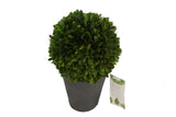 Topiary Single Ball