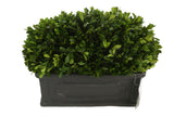 Topiary Rectangular Base