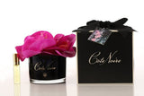 Large Côte Noire Perfumed Natural Touch Orchid