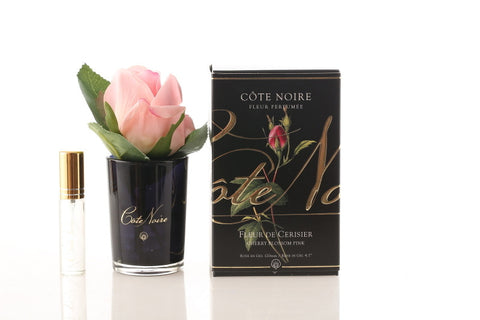 Small Côte Noire Perfumed Natural Touch Roses