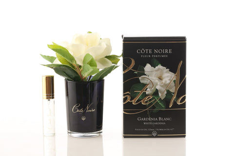 Small Côte Noire Perfumed Natural Touch Gardenia