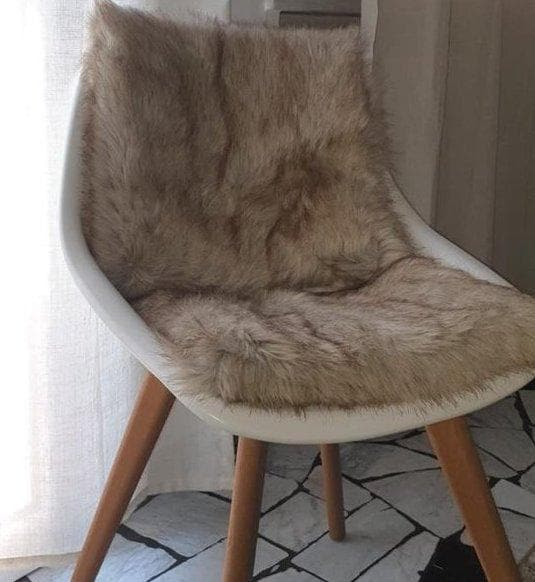 Coussin Chaise
