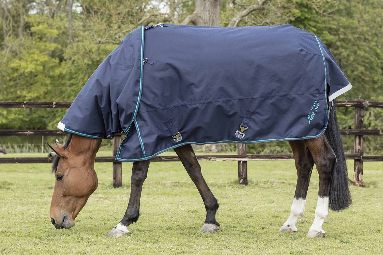 Mark Todd Heavyweight Turnout Rug with Neck Cover