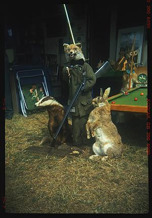Charlie's Hunting Party, Stow-cum-Quy 1993