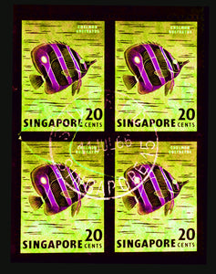 20 Cents Singapore Butterfly Fish (Neon), 2018
