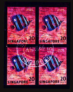 20 Cents Singapore Butterfly Fish (Pink), 2018