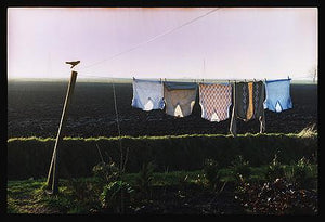 Washing Line, Black Horse Drove, Cambridgeshire 1993