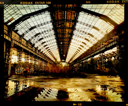 Factory Skeleton documents the now disused Lambretta Factory in Milan, which has grown into an architectural urban jungle.