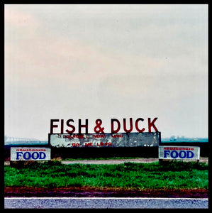 Fish & Duck, Cambridgeshire 1992