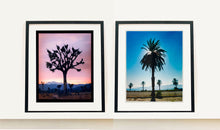 Load image into Gallery viewer, Classic Palm Tree Print, against a blue sky above desert, mountains and sea.