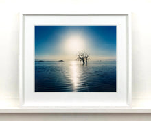 Load image into Gallery viewer, Towards Rock Hill, photographed by Richard in Bombay Beach, Salton Sea, California. The horizon intersected by sun rays, featuring a tree unexpectedly rising out of the lake gives this piece an ethereal quality.