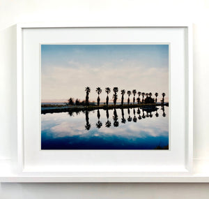Desert Oasis, photography series of eight.