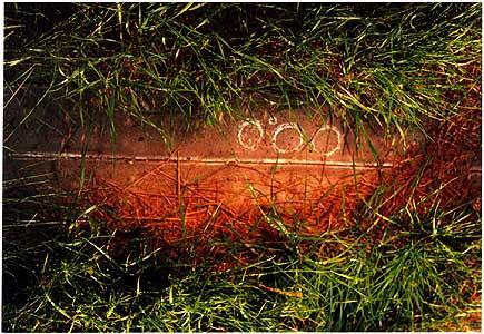 A set of photographs that followed a straight line. The images would go through, over and under what ever came in the path of the camera's lens: grass.